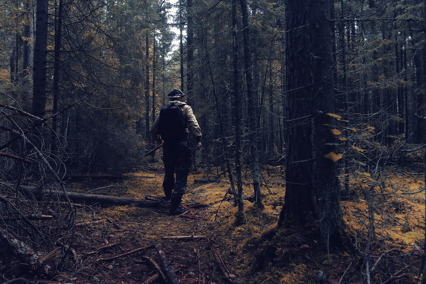 Soldier walking through forest terrain